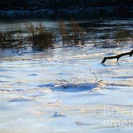 Robyn King - Frozen In Time -  Delaware River Series