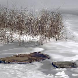 Julie Palencia - Frozen Landscape