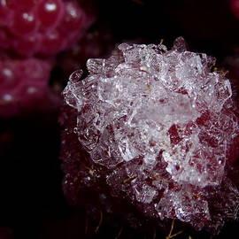 Perggals - Frozen Raspberry