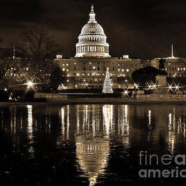 SCB Captures - Frozen Reflections on Capitol Hill