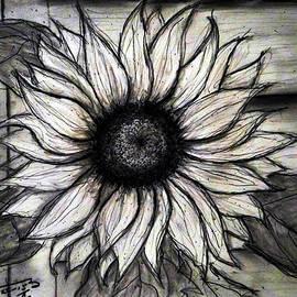 Jose A Gonzalez Jr - Full of Life - Sunflower