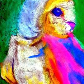 Sue Jacobi - Funky Barn Owl Art Print