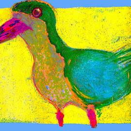Sue Jacobi - Funky Black Skimmer Bird Art Prints