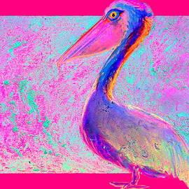 Sue Jacobi - Funky Goofy Colorful Pelican Art Prints