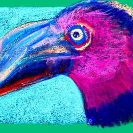 Sue Jacobi - Funky Hornbill Bird Art Prints