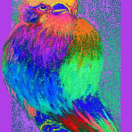 Sue Jacobi - Funky Lilac Breasted Roller Bird Art Prints