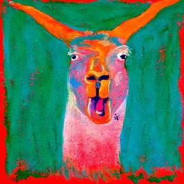 Sue Jacobi - Funky Llama Art Print