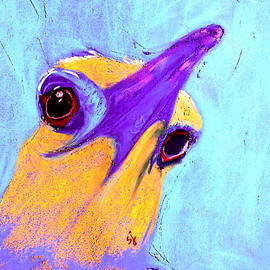 Sue Jacobi - Funky Night Heron Bird Art Print