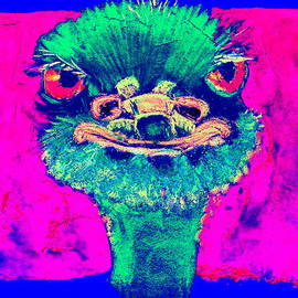 Sue Jacobi - Funky Ostrich Cool Dude Art Prints