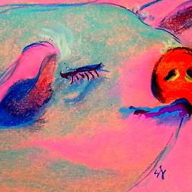 Sue Jacobi - Funky Piggy Pink