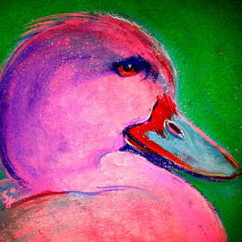 Sue Jacobi - Funky Pinky Ducky Art Print