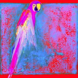 Sue Jacobi - Funky Rainbow Parrot Art Prints