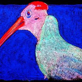 Sue Jacobi - Funky Southern Bald Ibis Red Wig Bird Art Prints