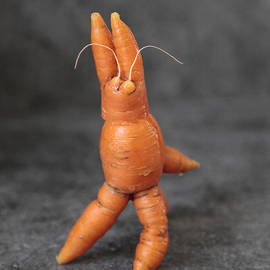 Alex Khomoutov - Funny Bunny - Dancing Happy and Super Cute Carrot. Connect yourself to Energy of Joy