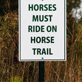 Cynthia Guinn - Funny Sign For Horses
