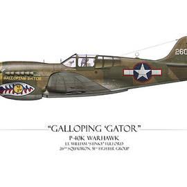 Craig Tinder - Galloping Gator P-40K Warhawk