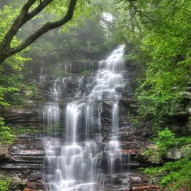 Lori Deiter - Ganoga Falls