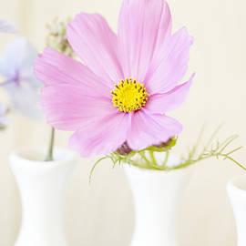 Bonnie Bruno - Garden Bouquets