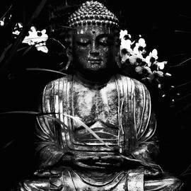Andrew Chianese - Garden Buddha