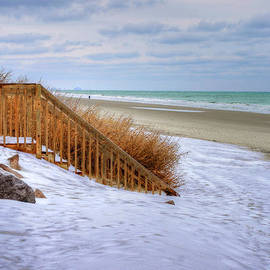 Kathy Baccari - Garden City Beach Ice Storm