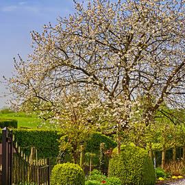 Wim Lanclus - Garden Entrance
