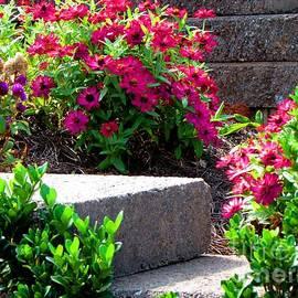 Gardening Perfection - Garden Path