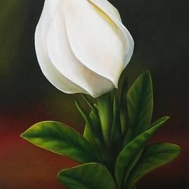 Paula L - Gardenia