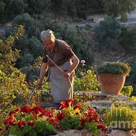Andrea Simon - Gardening Woman
