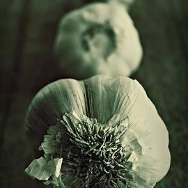 Clare Bevan - Garlic