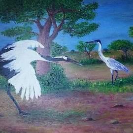Angel de Paz - Garzas reales