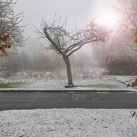 Svetlana Sewell - Gate to the heart of winter