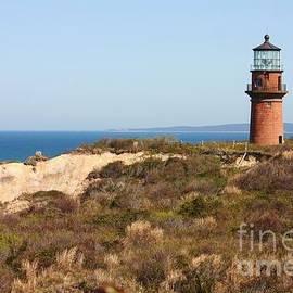 Carol Groenen - Gay Head Lighthouse