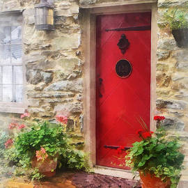 Susan Savad - Geraniums by Red Door
