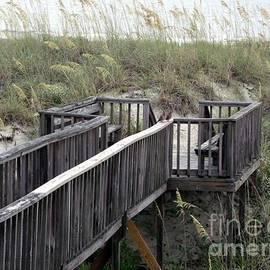Wendy Gertz - Get to the Beach