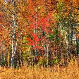 Michael Mazaika - Gettysburg at Rest - Early Morning Autumn Colors 2A - The Rose Woods
