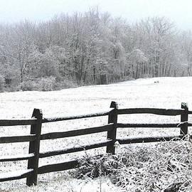 Angela Davies - Gettysburg In January