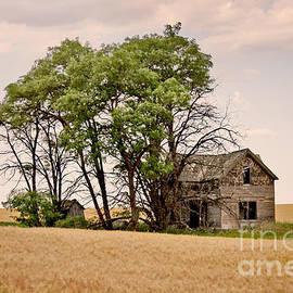 Andrea Goodrich - Ghost Farm
