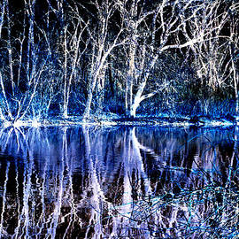 ImagesAsArt Photos And Graphics - Ghostly Trees In Reflection