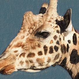 Donna Kennedy - Giraffe- Kibo