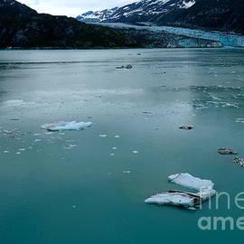 Jacqueline Athmann - Glacier Bay