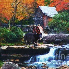 Lianne Schneider - Glade Creek Grist Mill