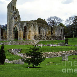 Bob Phillips - Glastonbury Abbey Ruins
