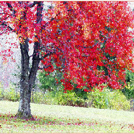 Mariarosa Rockefeller - Glorious Autumn