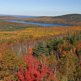 Juergen Roth - Glorious New England Fall Foliage Colors