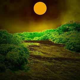 Bliss Of Art - Glow in the Moon Light