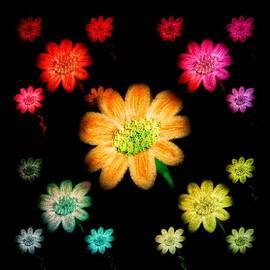 Chandana Arts - Glowing Daisies