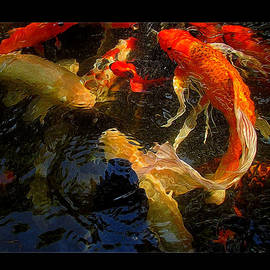 Shannon Story - Glowing Koi