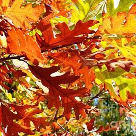 Lisa Kilby - Glowing Leaves
