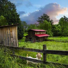 Debra and Dave Vanderlaan - Goat Farm