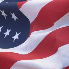 Chrisann Ellis - God Bless America